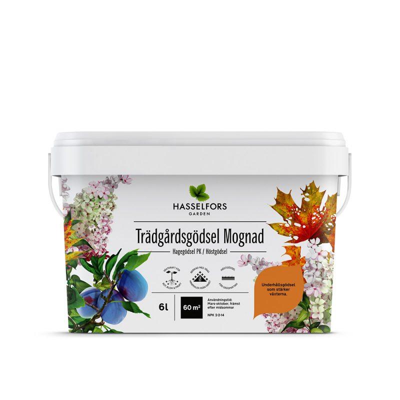 Vit låda med höstlov, plommon och vita växter på