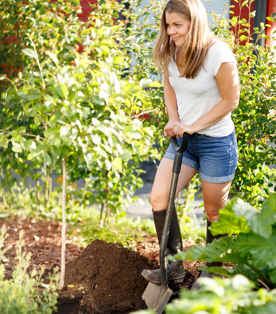 Fem anledningar till att plantera eller odla på hösten