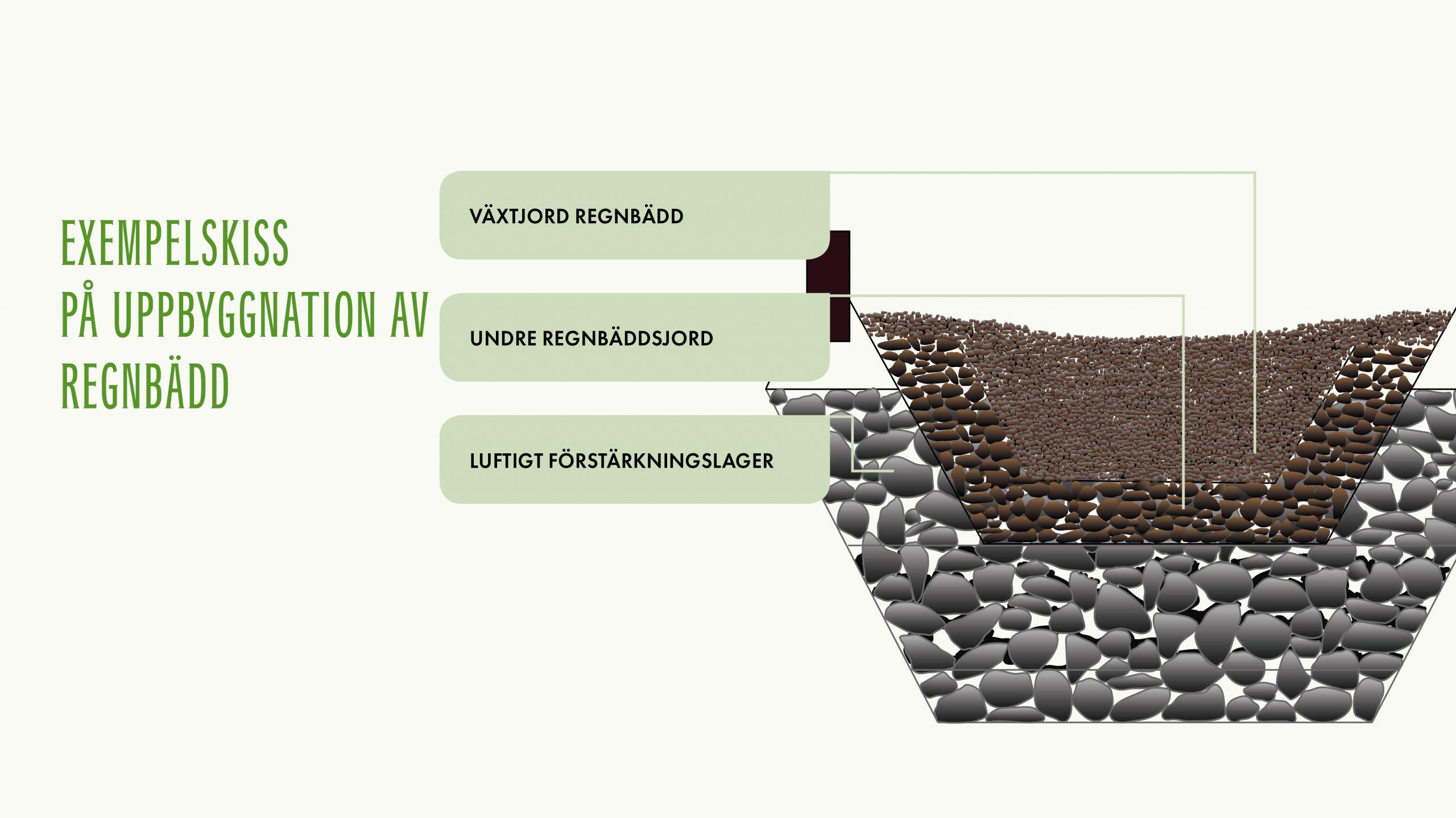 Fördelar med regnbäddar i urbana miljöer