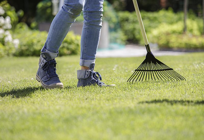 Enkla instruktioner hur man dressar gräsmattan