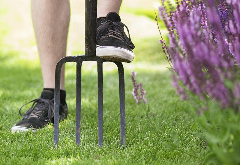 Tips hur du kan lufta din gräsmatta