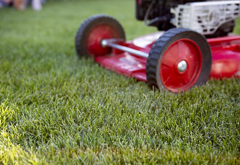 Rekommenderad klipplängd till gräsmattan
