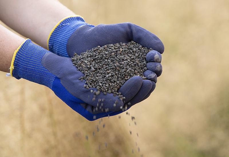 Information till dig som ska gödsla din gräsmatta