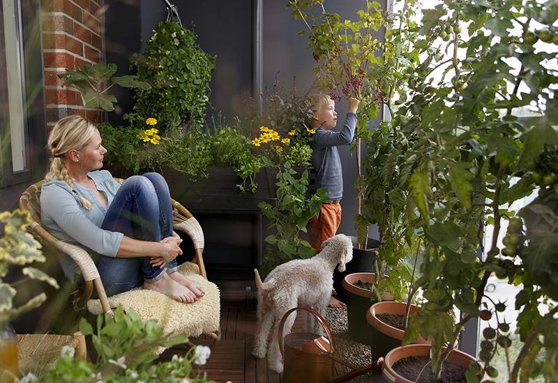 Tips hur du kan odla ätbart på din balkong