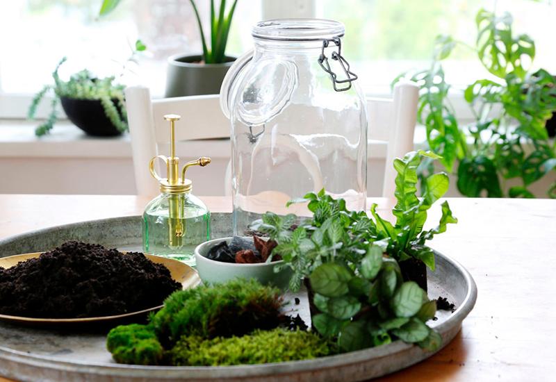 Dekorera en miniatyrträdgård med det du har hemma