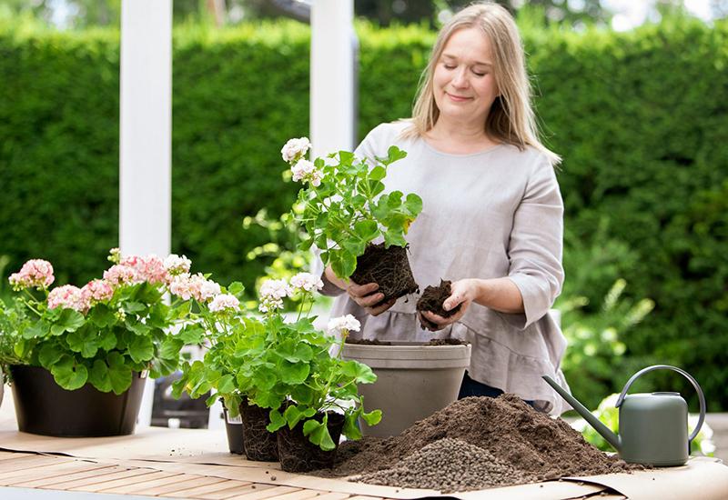 Enkla tips på hur du kan använda biokol i din odling för att förbättra jorden