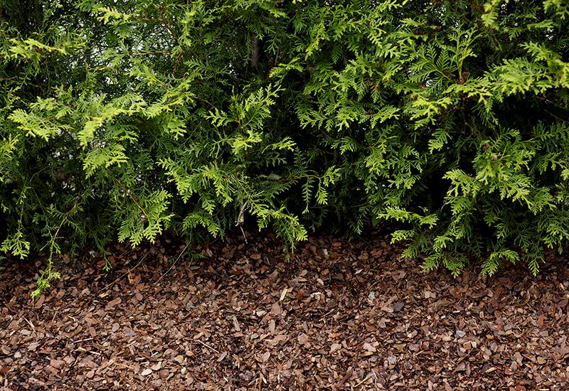 information om hasselfors garden iso certifikat och hållbarhet