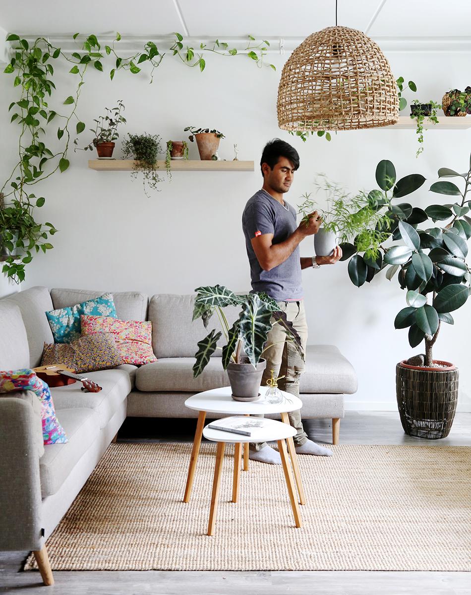 Här hittar du information hur ditt hem kan erbjuda livsmiljöer för ett brett spektrum av växter