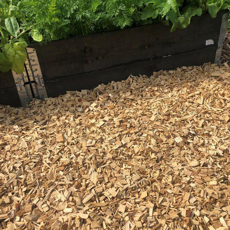 Träflis framför odlingsbänk