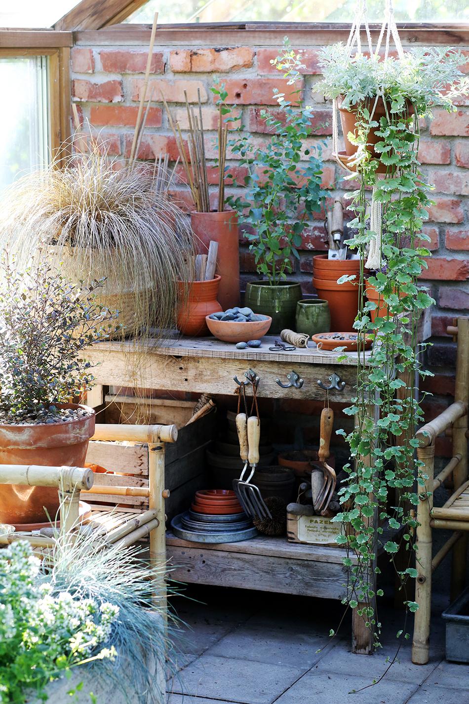 Trädgårdsbänk med planteringsredskap, krukplanteringar och växter